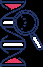 Lupa em DNA com as quatro bases nitrogenadas: adenina, citosina, guanina e timina